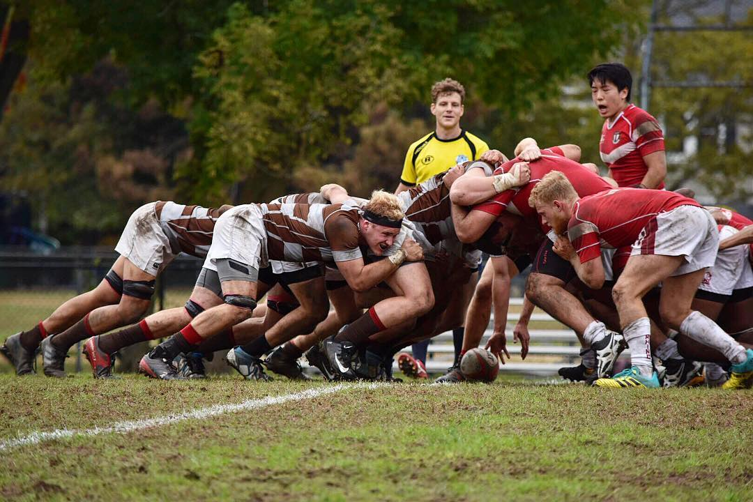 Brown looks to win hook vs Harvard