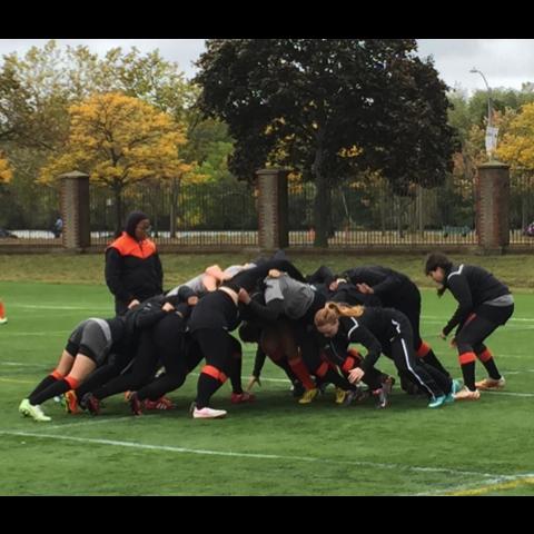 Princeton vs Harvard 10/3/15