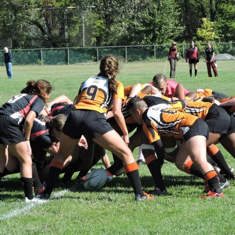 Princeton Harvard Scrum