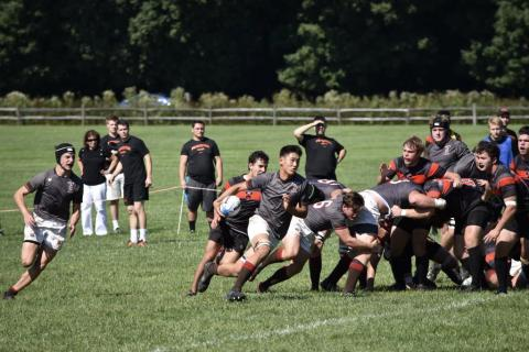 Brown defeats Princeton 43 - 0